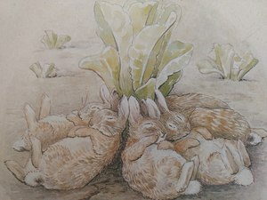 Cuentos completos de Beatrix Potter